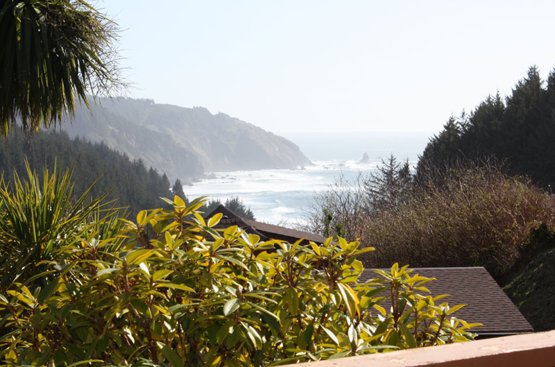 Whaleshead Beach Resort view